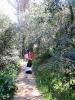 A contatto con la natura: le nostre passeggiate!